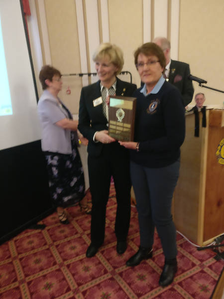Ann reecives the District Governor's Club Excellence Award